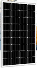 PLM-110M-36 110