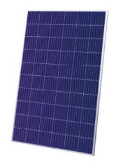TS-P604