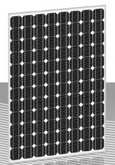 ZX235(48)MS — ZX265(48)MS