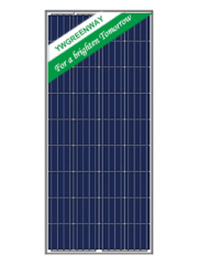 POLY 36CELL 175W