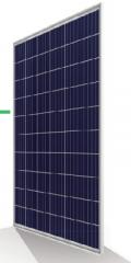 INE-Poly60(270-290)-2020-M2