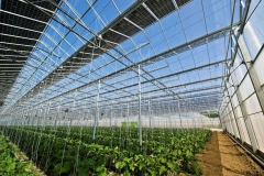PV Green House Mounting System