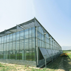 0.5mm-15mm Thickness Commercial Greenhouse Solar System Electric Power Galvanized Surface Treatment PV Film Greenhouse