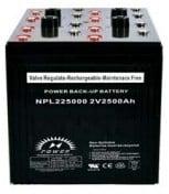 NPL225000