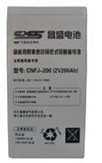 CNFJ-200