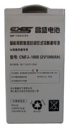 CNFJ-1000