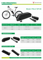 Electric bike lithium battery pack