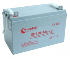 XD100-12 Short