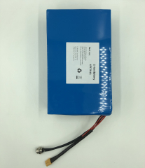 Electric scooter battery 48 Volt