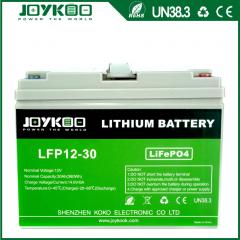 LFP 12V-30Ah