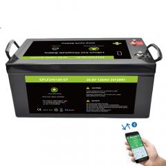 Lifepo4 battery pack 24V 120AH