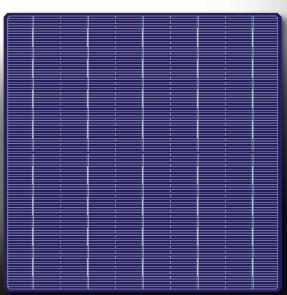 MS-5BB156.75(19.3-20.6) Poly Solar Cells (half cut)
