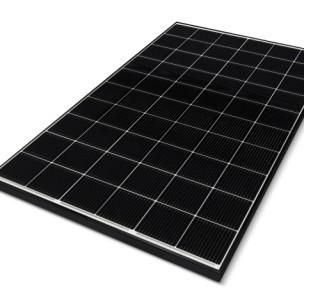 LG NeON® 2 60Cells 360-370