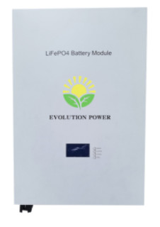Lifepo4 battery pack 48V 100AH