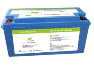 Lifepo4 battery pack 36V 50AH