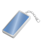 Key Ring (Flashing)